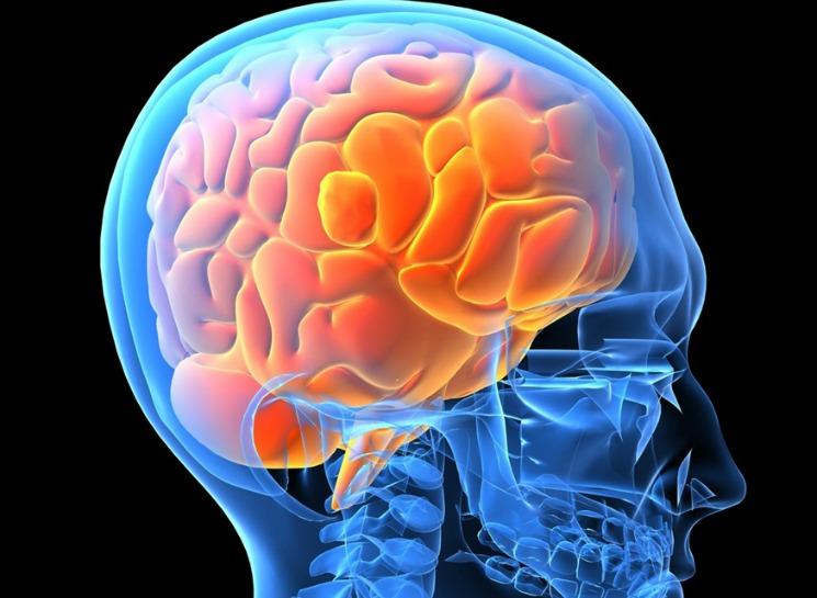 Beyin Kanamasını Tarayan Kask